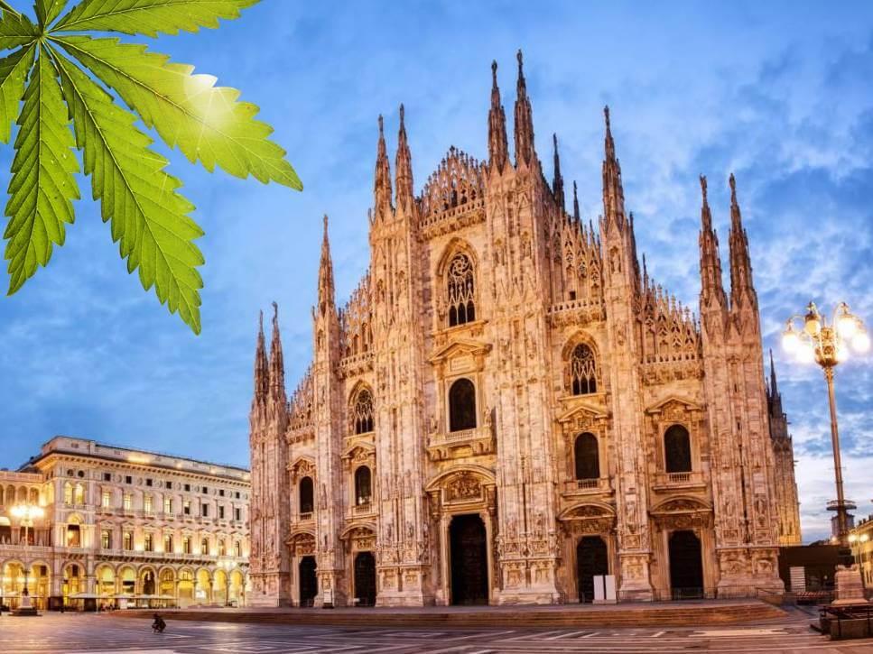 Milano dopo le palme arriva la marijuana con il salone for Il salone milano