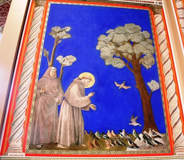 giotto assisi