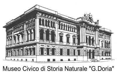 logo museo storia naturale