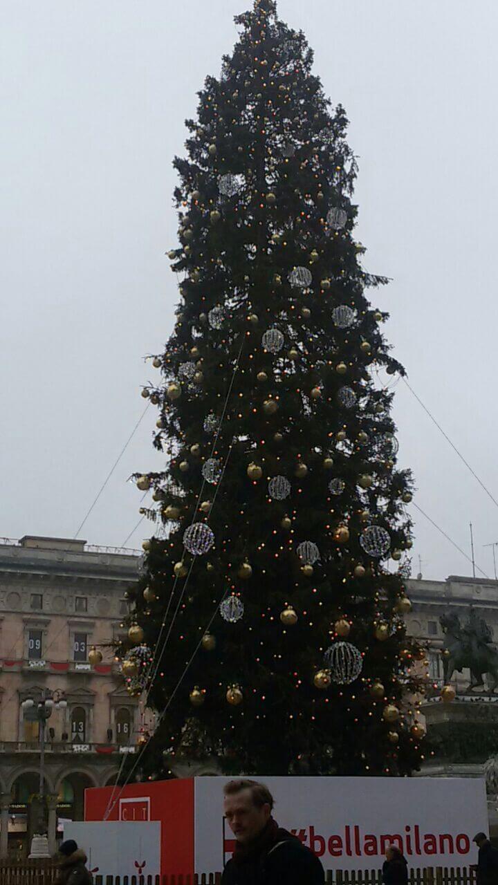 Albero Di Natale Milano.Albero Di Natale 2015 Piazza Duomo A Milano