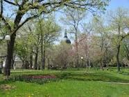 parchi verdi pavia