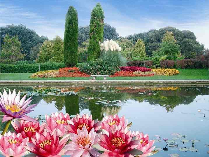 Valeggio sul mincio parco giardino sigurt - Il giardino di elizabeth ...